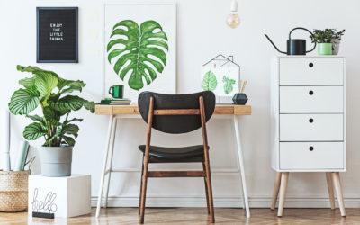 Homeoffice einrichten: 6 Tipps für das Arbeiten von zu Hause