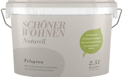 SCHÖNER WOHNEN FARBE Wand- und Deckenfarbe »Naturell Felsgrau«